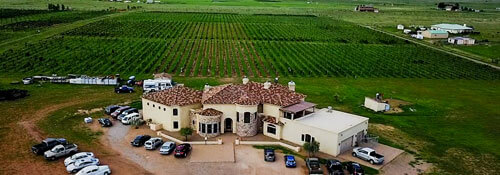 Drone Aerial Photography for Vineyards